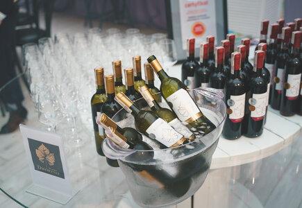 Wina z polskiej Winnicy Dwórzno